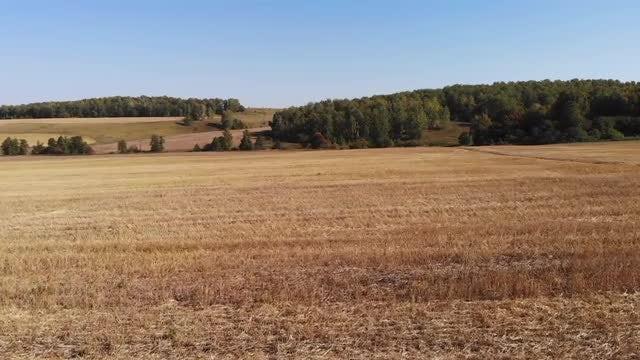 Flying Over Dry Grassland: Stock Video