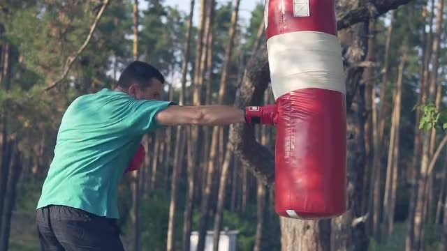 Boxer Training With Punching Bag: Stock Video