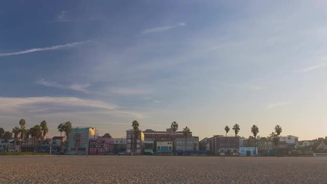 Wide-angle Shot Of Venice Beach: Stock Video