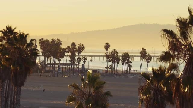 Long Shot Of Venice Beach: Stock Video