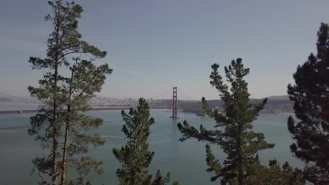 Revealing The Golden Gate Bridge: Stock Video