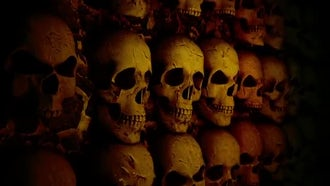 Stone Wall With Skulls: Motion Graphics