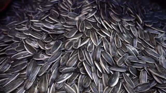 Close-up Shot Of Sunflower Seeds: Stock Video