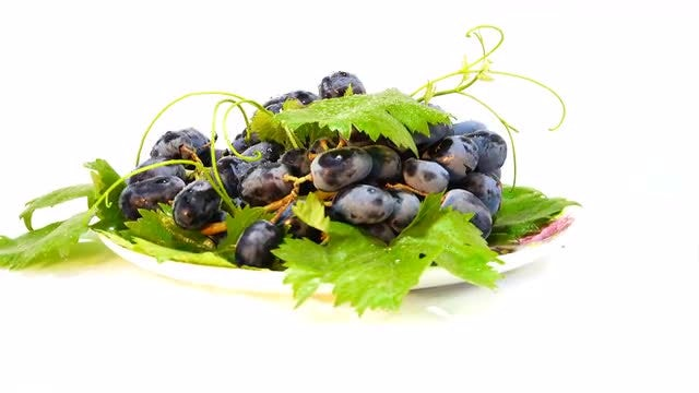 Black Grapes On White Plate: Stock Video