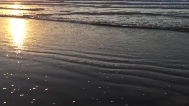 Waves At Sunrise: Stock Video