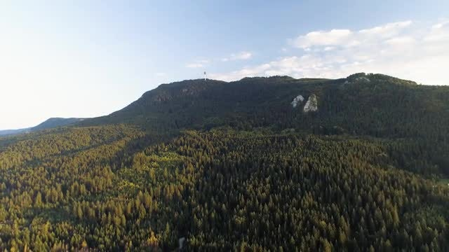 Zoom-out Shot Of Forest Mountain: Stock Video