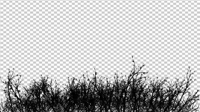Grass And Shrubs Pack: Stock Motion Graphics