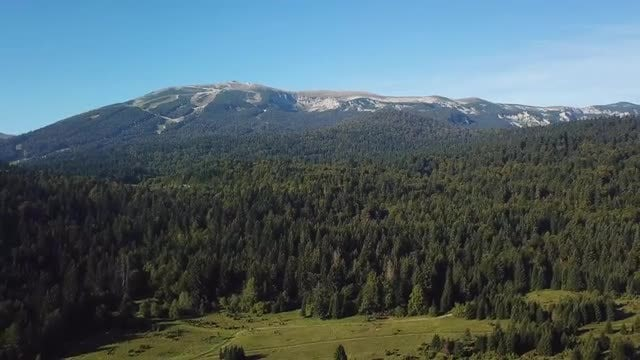 Wide-angle View Of Forest Mountain: Stock Video
