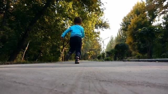 Boy Running In Botanical Park: Stock Video
