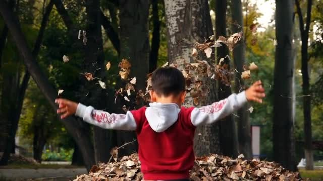 Boy Throwing Dry Leaves Up: Stock Video