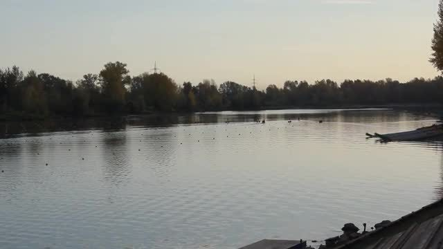Quiet Water Sports Venue: Stock Video