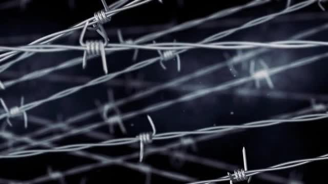 Barbed Wire Background: Stock Motion Graphics