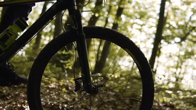 Cyclist Riding In The Forest: Stock Video