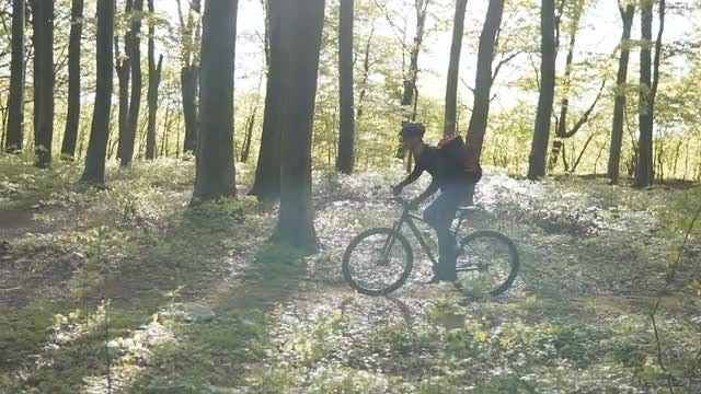 Man Riding Bicycle In Forest: Stock Video