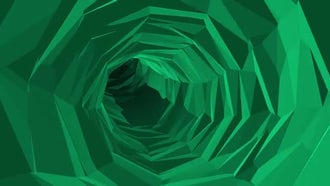 Green Poly Tunnel: Motion Graphics