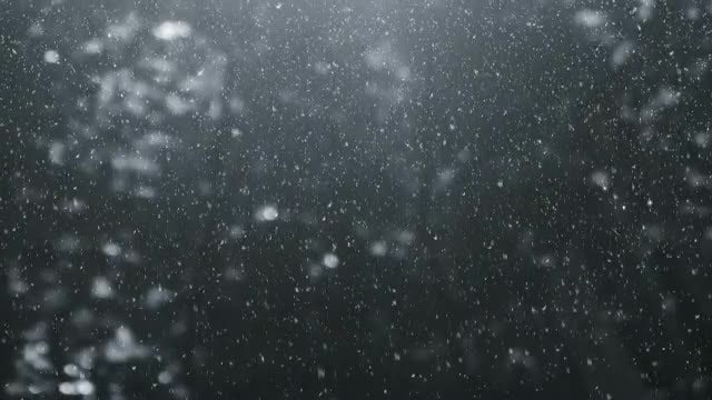 Winter Background Loop: Stock Motion Graphics