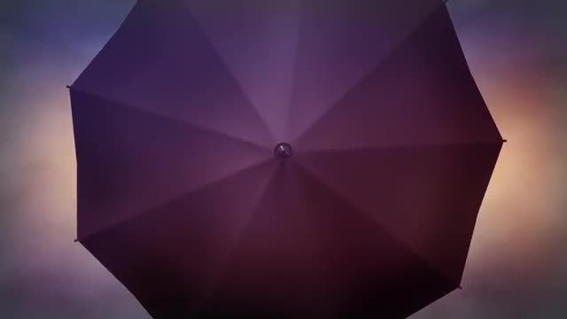Autumn Umbrella: Stock Motion Graphics