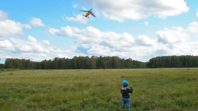Little Boy Flying A Kite: Stock Video