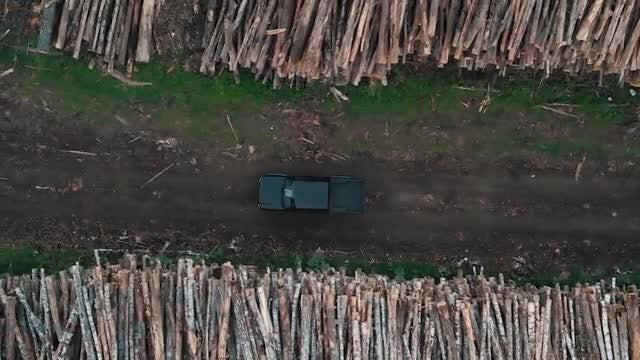 Car Driving Through Logging Site: Stock Video