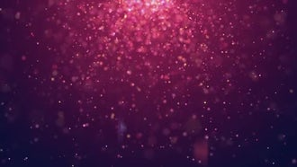 Particle Bloom: Motion Graphics