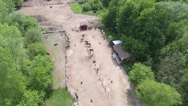 Aerial Shot Of Horse Ranch: Stock Video