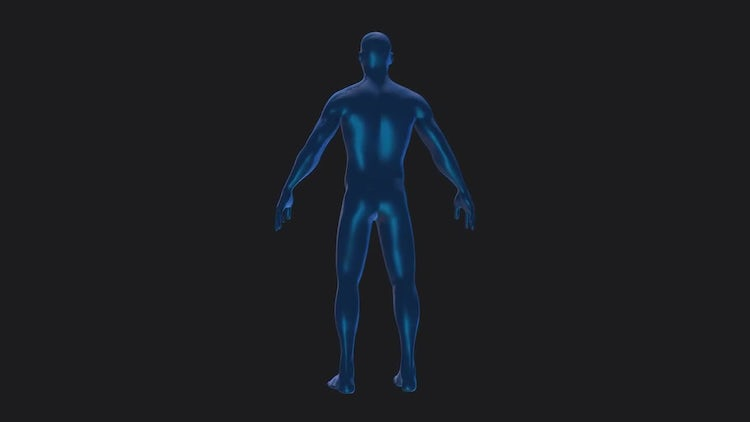 Blue Human Body Rotation Alpha: Stock Motion Graphics