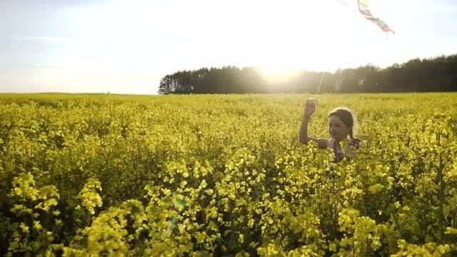 Girl Runs To Fly Kite: Stock Video