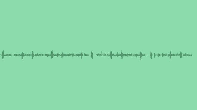 Night Jungle Ambiance: Sound Effects