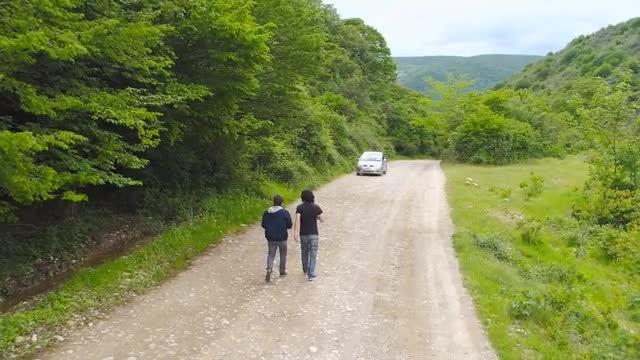 Two Men Walking In Forest: Stock Video