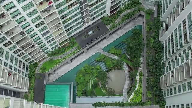 Decorative Garden On Apartment Blocks: Stock Video