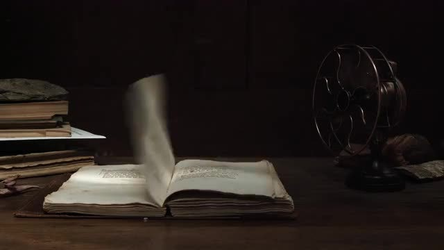 Withered Leaves On Book Leaves: Stock Video