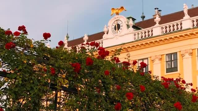Schönbrunn Palace, Vienna, Austria: Stock Video