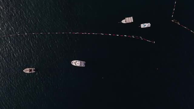 Aerial Shot Of Speed Boats: Stock Video