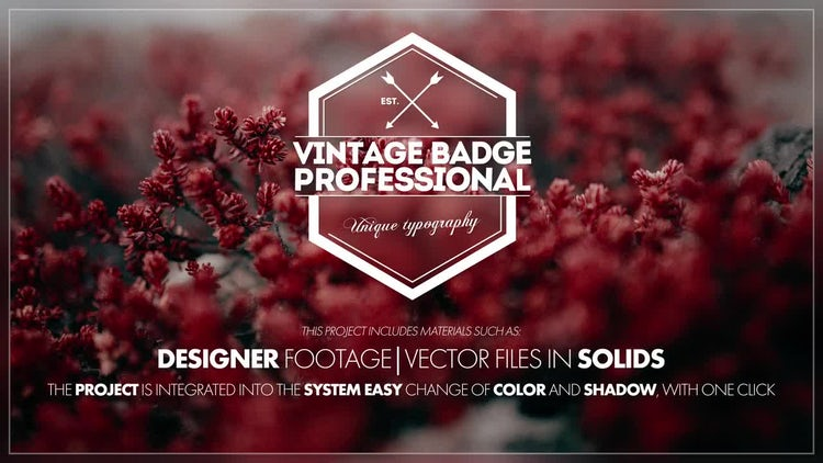 30+ Creative Typography Scenes: After Effects Templates