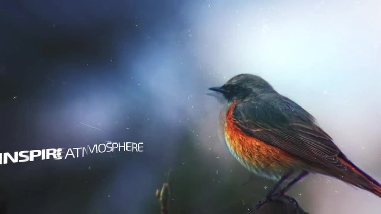 Inspire Epic Slideshow: After Effects Templates