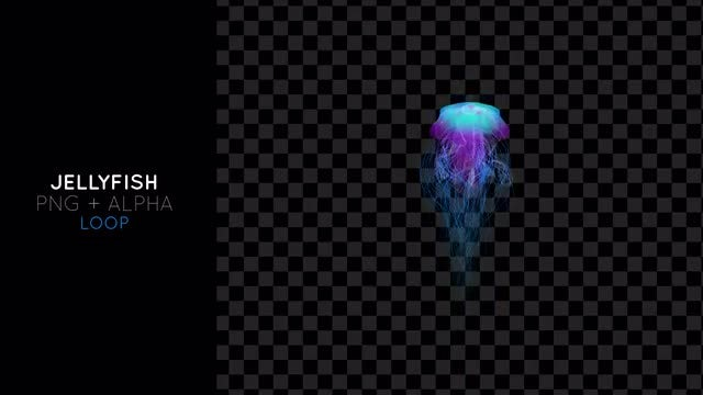 Jellyfish Propelling Up: Stock Motion Graphics
