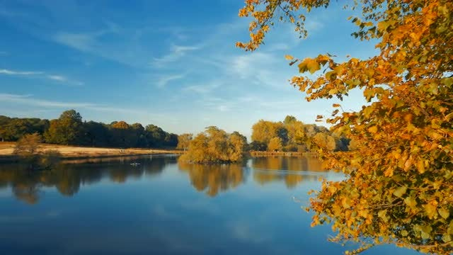 Panning Over Beautiful Autumn Lake: Stock Video