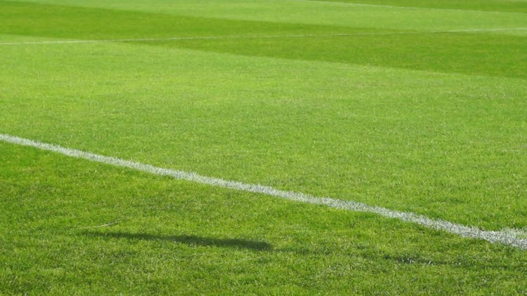 Football field: Stock Video