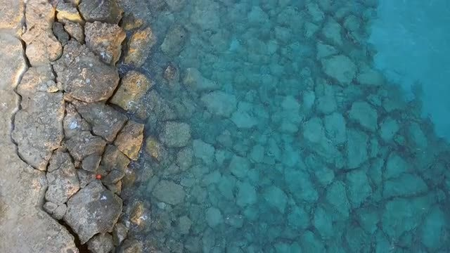 Overhead Shot Of A Reef: Stock Video