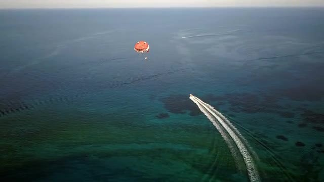 Aerial Shot Of A Parasailer: Stock Video