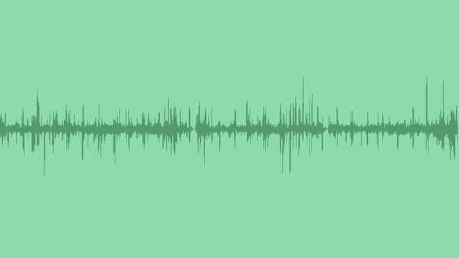 Swamp: Sound Effects