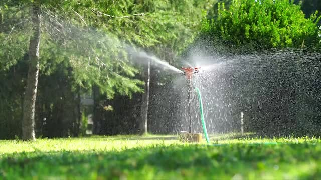 Garden Sprinkler Watering The Lawn: Stock Video
