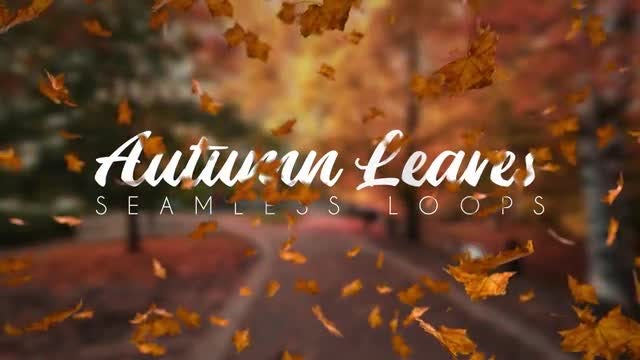 Autumn Leaves: Motion Graphics Templates