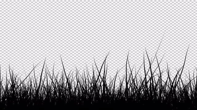 Grass Waving In The Wind Pack: Stock Motion Graphics