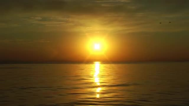 Magical Golden Sunset Over Ocean: Stock Video