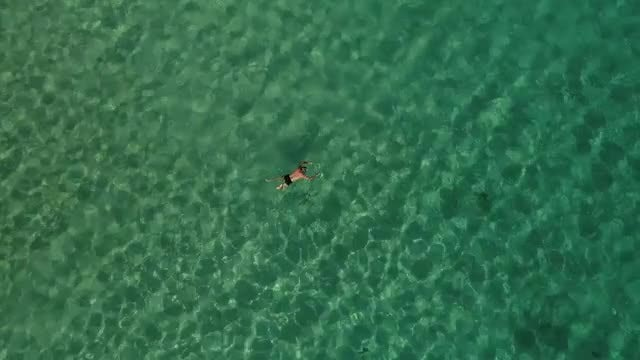 Aerial Shot of People Swimming: Stock Video