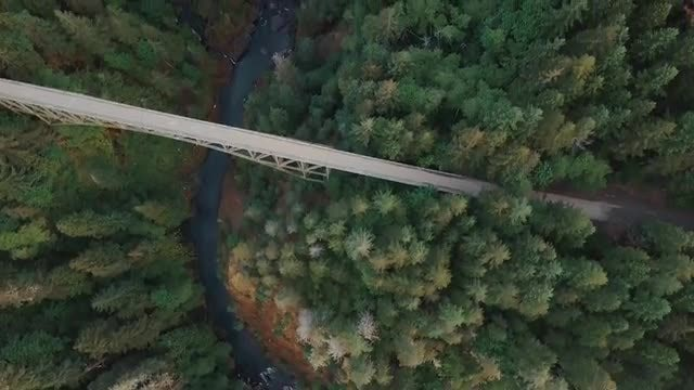 Aerial Shot Of A River: Stock Video