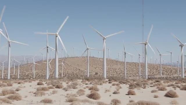 Wind Farm: Stock Video