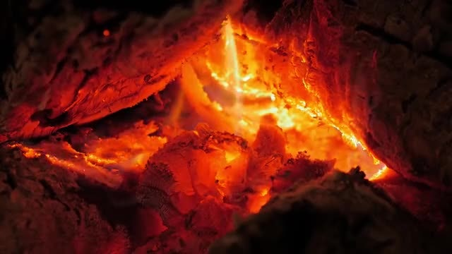 Close-up Shot of Firewood Burning: Stock Video