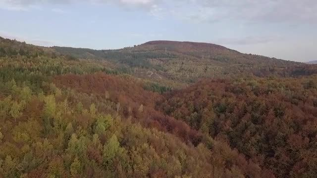 Aerial Shot Of Hilly Forest: Stock Video